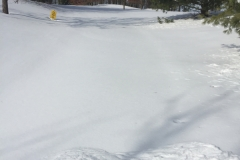 Snow Removal before