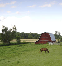 pasture_home